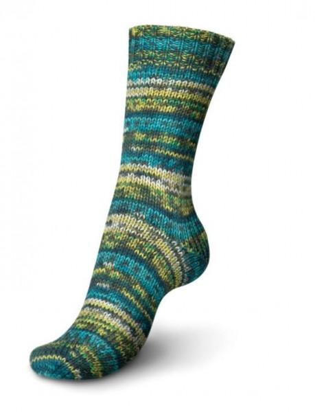 Schachenmayr Regia Sockenwolle 8-fädig color