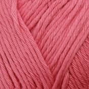 EPIC peony pink