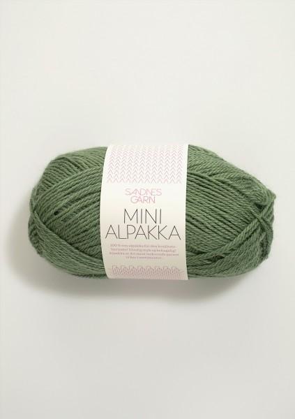 Mini Alpakka Grün