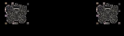 Logo-Mari-Adam