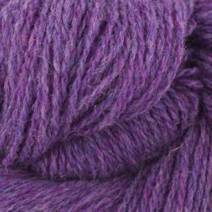 BIO Shetland Violet