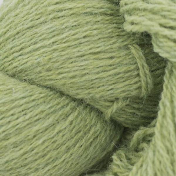 BIO Shetland Lindgrün