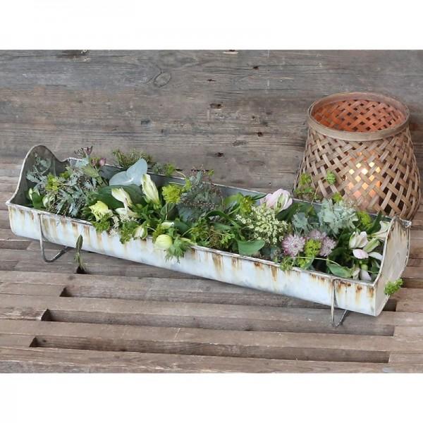 Box für Pflanzen