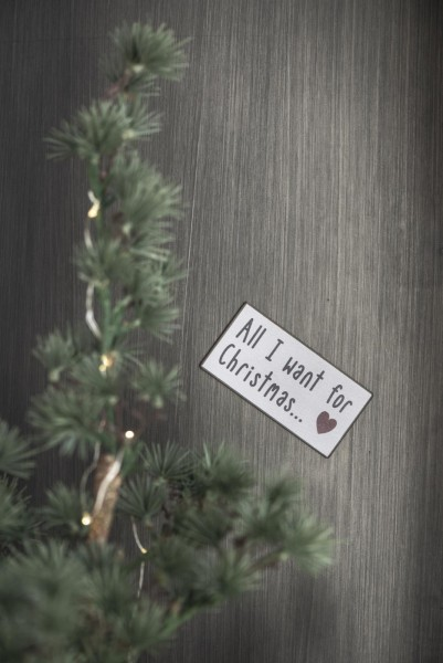 Magnet ALL I WANT FOR CHRISTMAS
